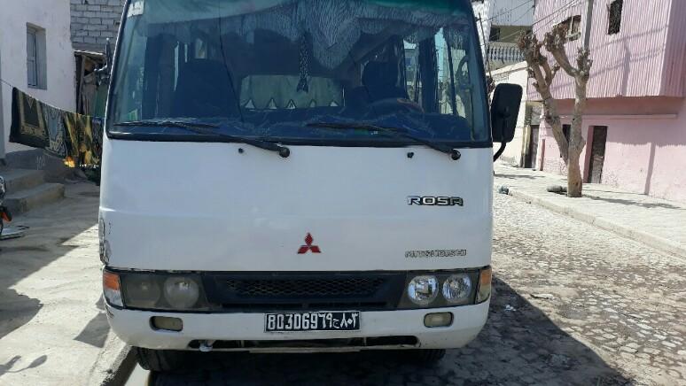 Bus rosa 25 places
